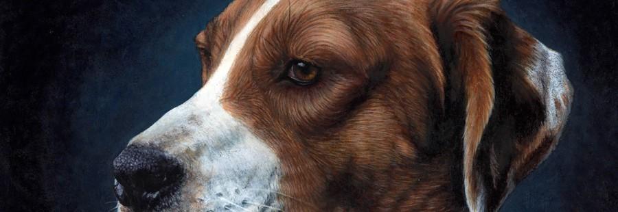 cropped-hound.jpg