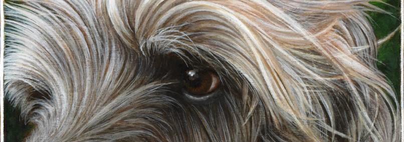cropped-wolfhound.jpg