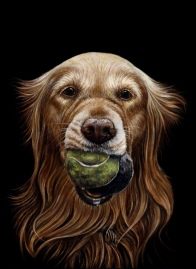 golden w tennis