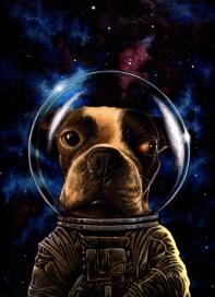 lola astronaut