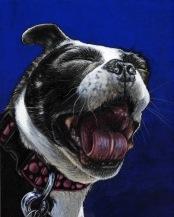 lola yawning