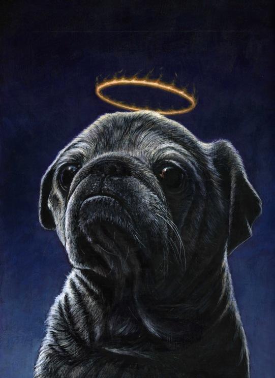 memorial pug